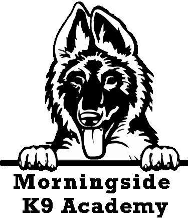 Dog Training | Puppy Training | Morningside k9 Academy